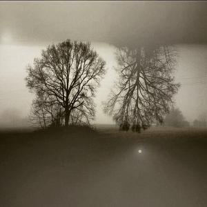 Asma by Silvia Casali