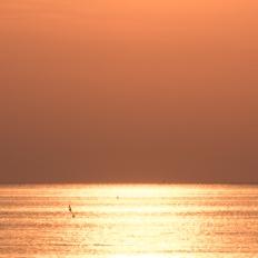 L'alba di Gildo